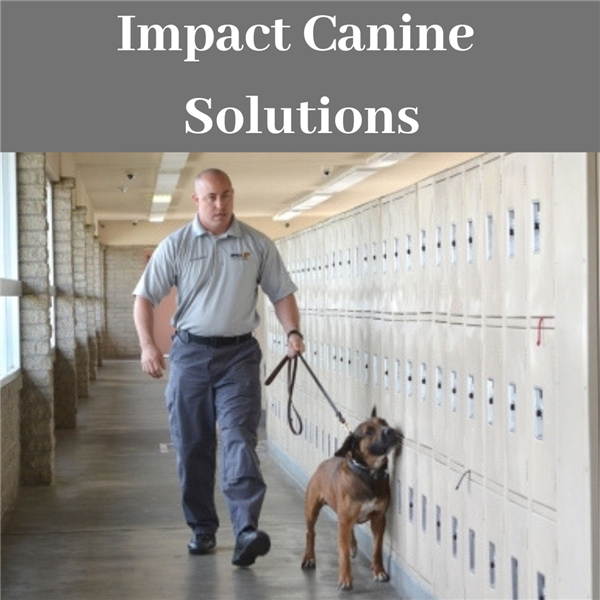 Canine Impact Solutions